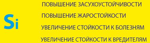 znachenie kremnija v nanit thermo